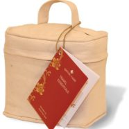 Travel Essentials Kit by Apothe-Carry Natural Remedy Kits
