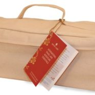 International Travel & Adventure Essentials Kit by Apothe-Carry Natural Remedy Kits
